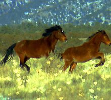 Wild Hearts by Jeanne  Nations
