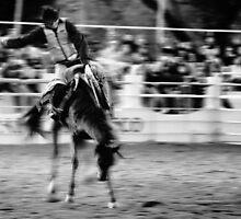 Saddled bronco riding. by Paul Amyes