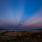 Moon Rising  by Cynthia Broomfield