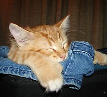 Jeans Are For Sleeping  by down23