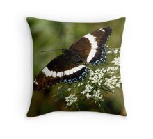 White Admiral on Queen Anne's Lace Throw Pillow