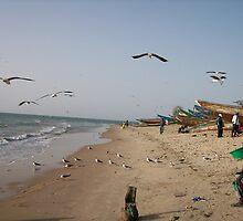 Tanji Beach, Gambia by Mark Moore