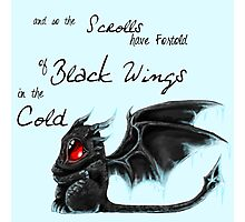 Black Wings Photographic Print