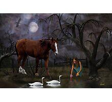 Swan Lake Paradise Photographic Print