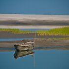 Bangladesh Landscape by Aziz Dhamani