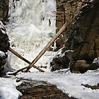 A Frozen Lake Falls by Richard Williams