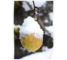 Frosted Fruit Poster