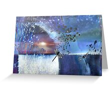 Pond Play...A Glorious Night Greeting Card