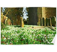 St George's, Brede - Spring In The Churchyard Poster