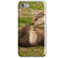 Inquisitive Otter iPhone Case/Skin