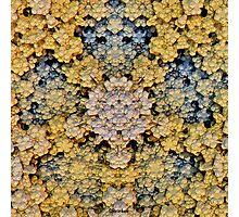 'Precious Clusters' Photographic Print