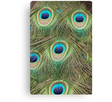 Colourful Eyes Canvas Print