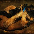 It's Been A Hard Day's Night! by pat gamwell