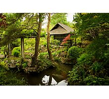 Oasis of Serenity Photographic Print