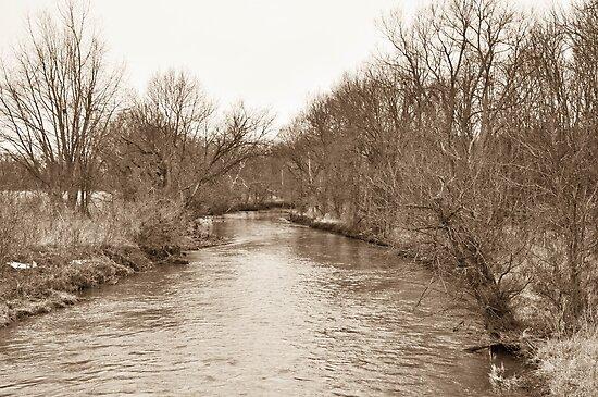 Parker City Stream by mltrue