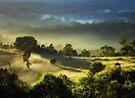 """Morning Light"" by debsphotos"
