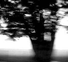 A blur of Rain by jadey182