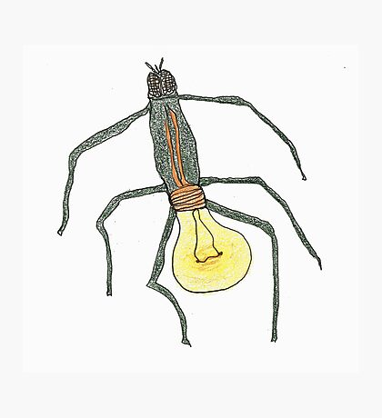 light bulb bug Photographic Print