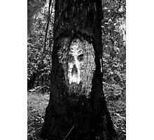 The face in the tree Photographic Print
