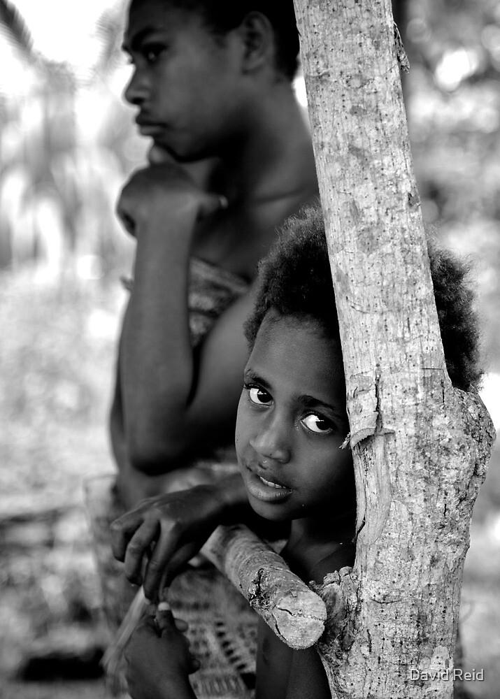 Vanuatu by David Reid