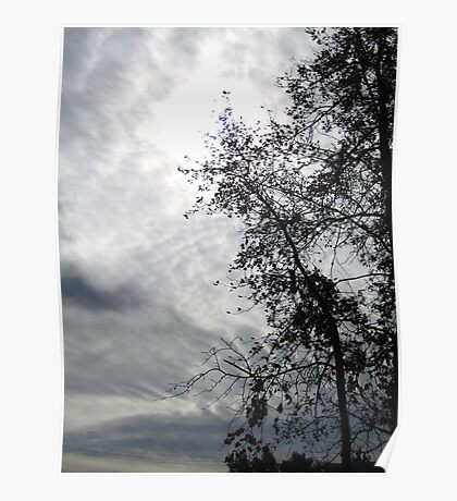 If I could touch the sky Poster