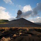 Mt Yasur Volcano by DianaC