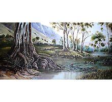 Glorious Gum - Flinders Ranges Photographic Print