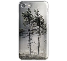 12.9.2015: Pine Trees, Autumn Morning II iPhone Case/Skin