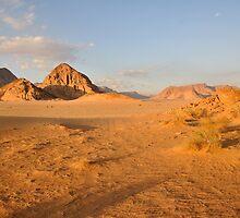 Desert landscape by Milonk