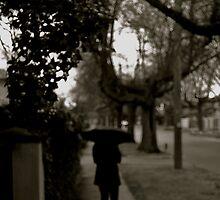 Walk down Rowell Avenue by HarryHasapis