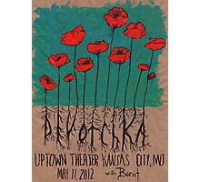 Devotchka Poppies Photographic Print