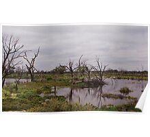 Renmark Flood Plains Poster