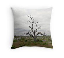 Renmark Flood Plains, 2 Throw Pillow