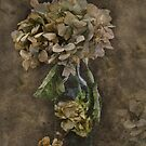 Hydrangea Preservation by Dianne English