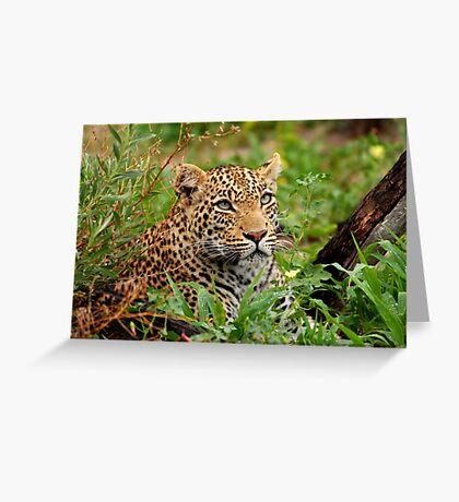 Beady Eye Greeting Card