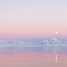 Moonrise, Lemaire Channel, Antarctic by Neville Jones