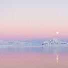 Moonrise, Lemaire Channel, Antarctic by Neville Jones