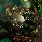 Lego jungle eagle view by Shobrick