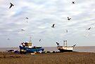 Aldeburgh Boats and Gulls. by Darren Burroughs