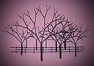 Tree Sculpture by Darren Burroughs