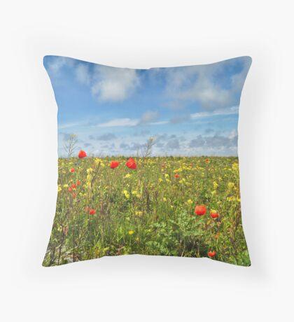 Machair, Western Isles, Scotland Throw Pillow