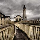 Pigeon Point Perspective by Blake Rudis