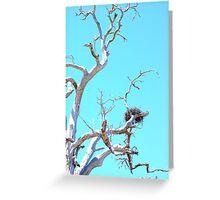 habitat tree Greeting Card