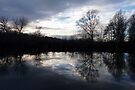 Reflections by Darren Burroughs
