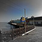 Hastings Pier  by larry flewers