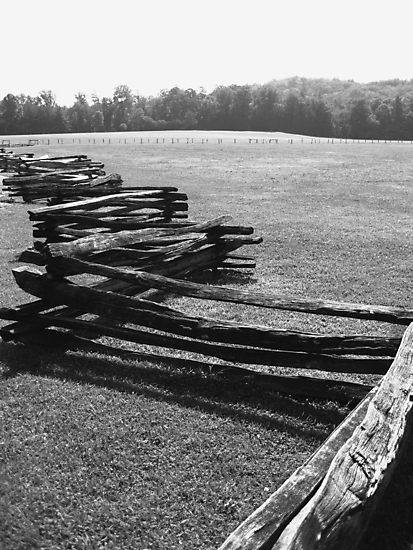 Split Rail Fence and Cade's Cove, Tennessee by Glenn Cecero