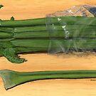 celery stick, celery stalk by bernzweig