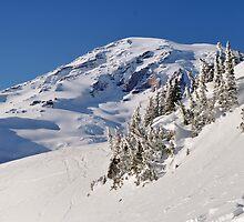 Winter at the Mountain - Mt. Rainier N.P. by Mark Heller