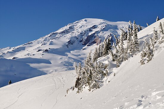 Winter at the Mountain - Mt. Rainier N.P. by Mark Heller