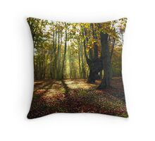 Enticing Throw Pillow